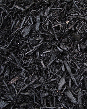 Midnight Black Mulch.jpg
