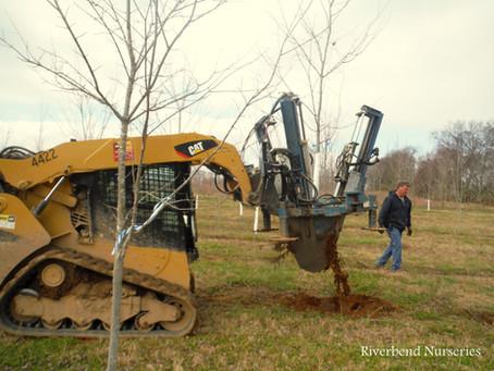 Digging Trees