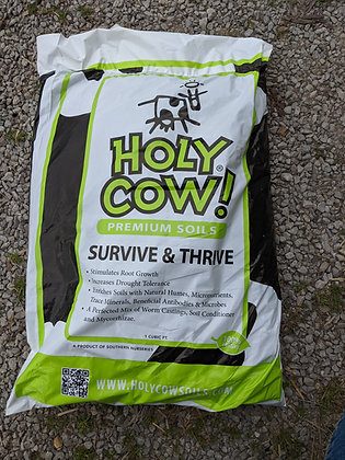 Holy Cow Survive & Thrive
