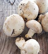 Button Mushrooms 1lb