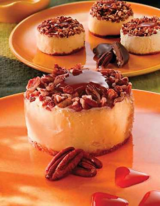 Turtle Cheesecake Case of 24