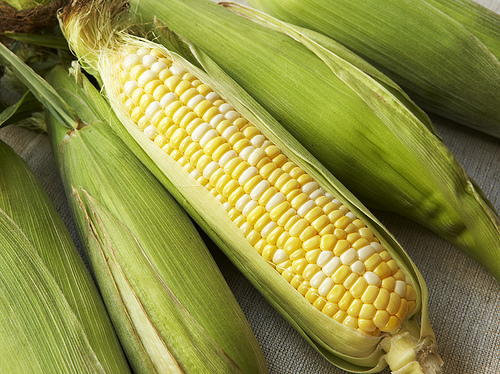 Fresh Corn on the Cob Each