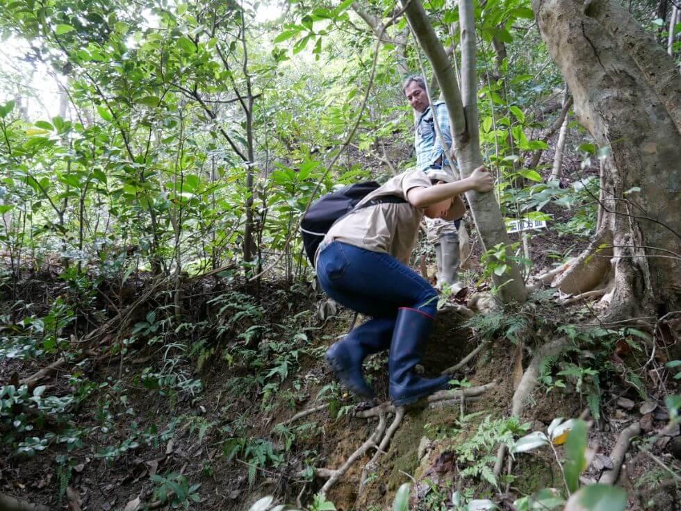 瀬戸内町加計呂麻島でトレッキング!海、山、川をのんびりと探検するなら『クロスアイランド奄美』へ!