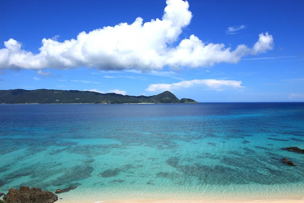 【奄美大島】加計呂麻島で海遊び!奄美大島でアクティビティといえば『ダンデライオン奄美』