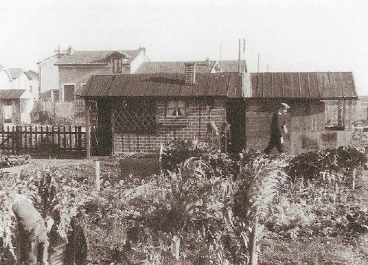 """Photographie de Jardins de """"l'oeuvre lyonnaise des jardins ouvriers"""""""
