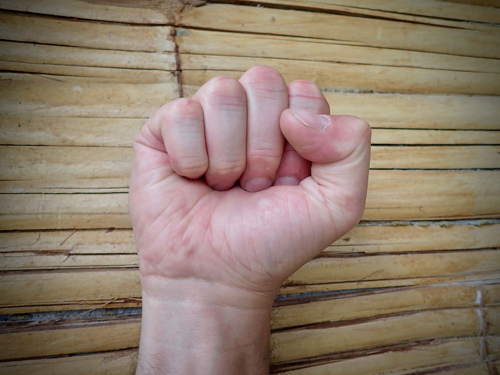 Hand in Full Fist position