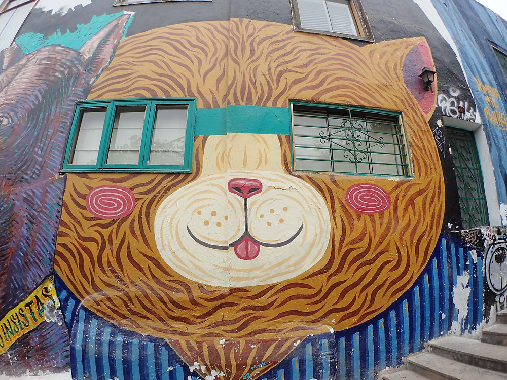 Barranco bear street art that sadly was removed by my next visit