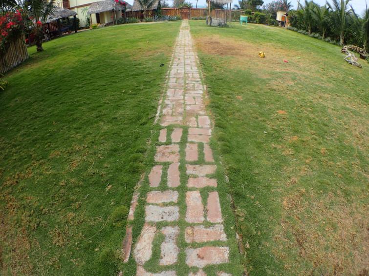 Garden path before...