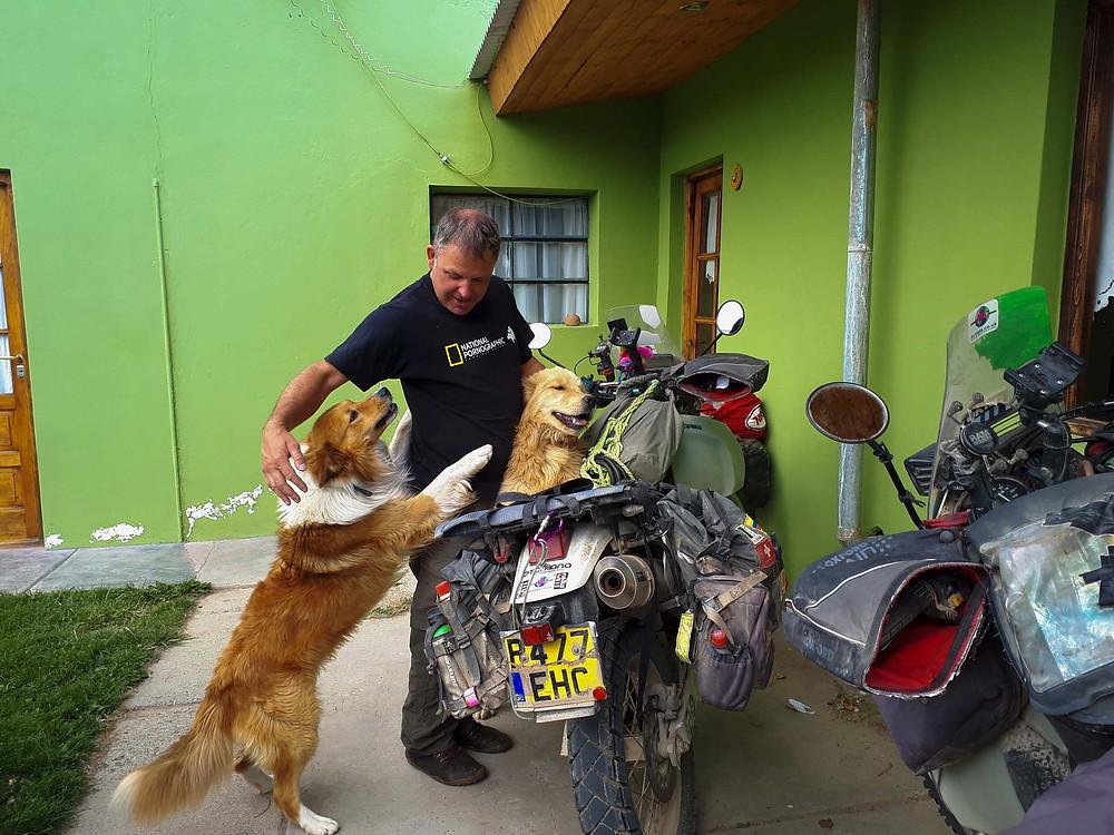 Doggies excited about having new guests at Hospedaje Aldo, Gobernador Gregores - AvVida.co.uk