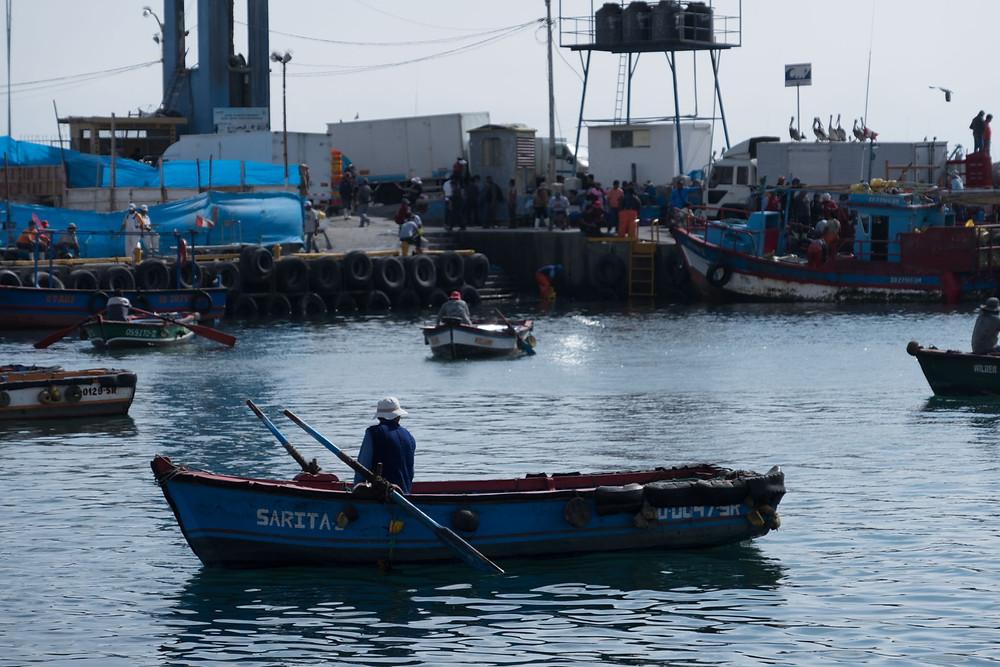 Fishermen, Ilo, Peru - AvVida.co.uk