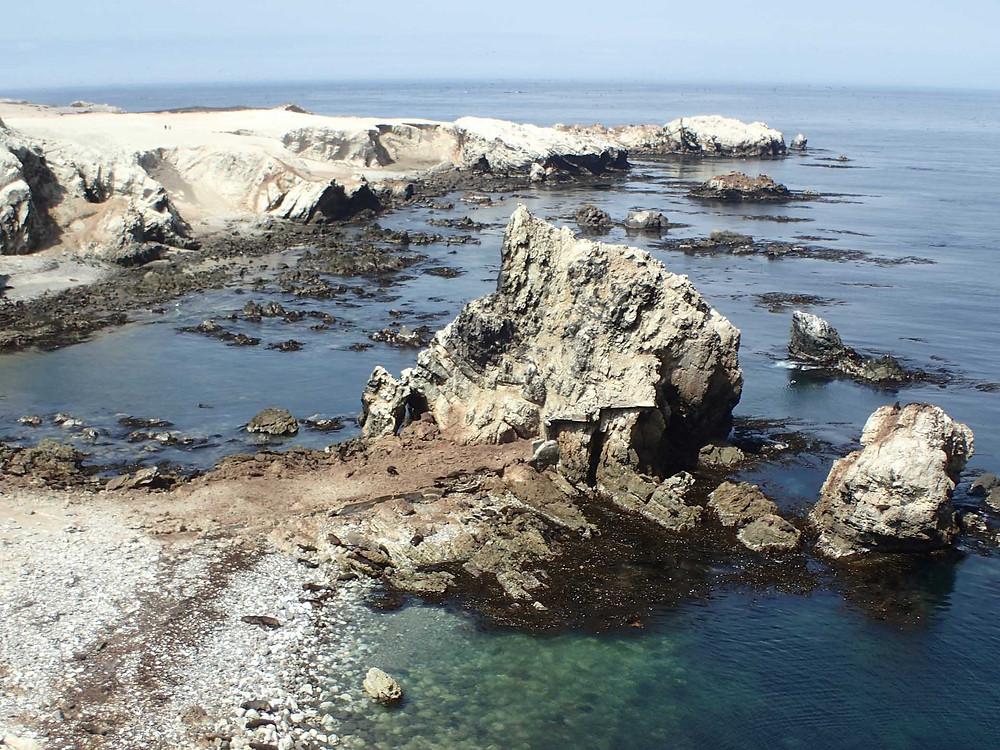 Coast line - Picture by Suzie Bostock