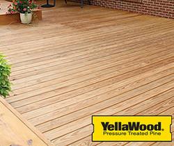 Yellowwoodsmall.jpg