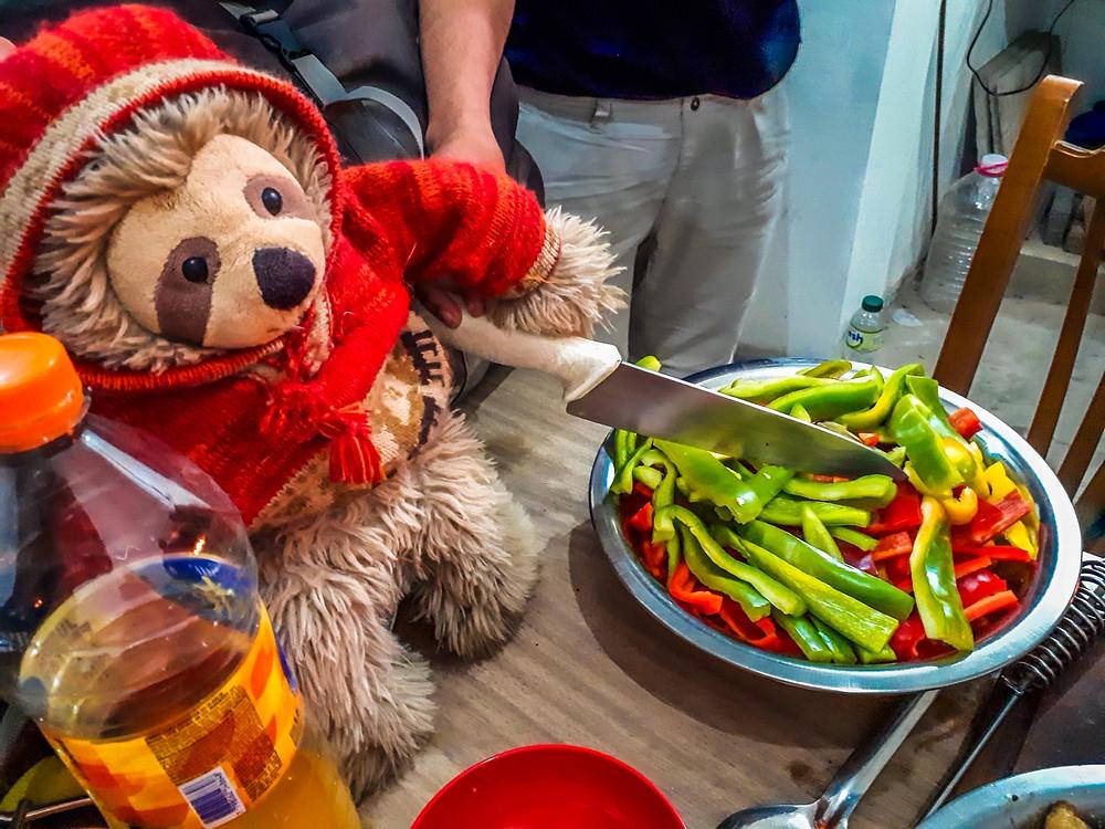 Cyril the Sloth getting involved in the BBQ prep in El Calafate with Eduardo - AvVida.co.uk