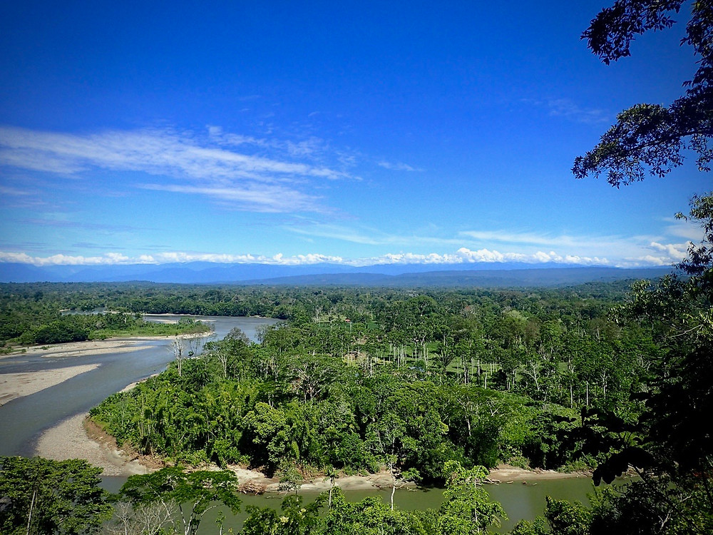 Napo river, amazing view!