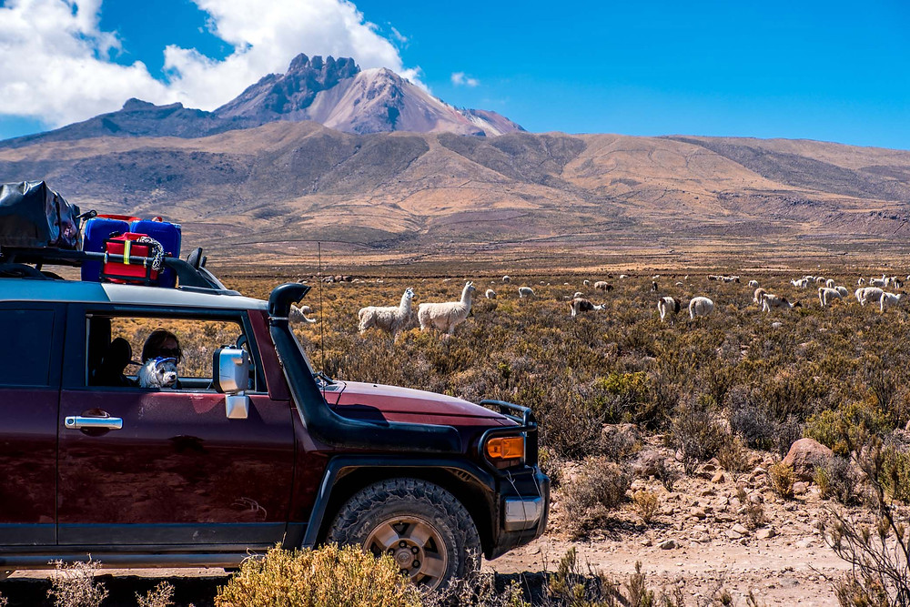 Volcano Tunupa, Llamas and Kirsi and Jack, North of Bolivia Salt Flats - AvVida.co.uk