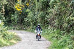Kelvin Bolivian Death Road
