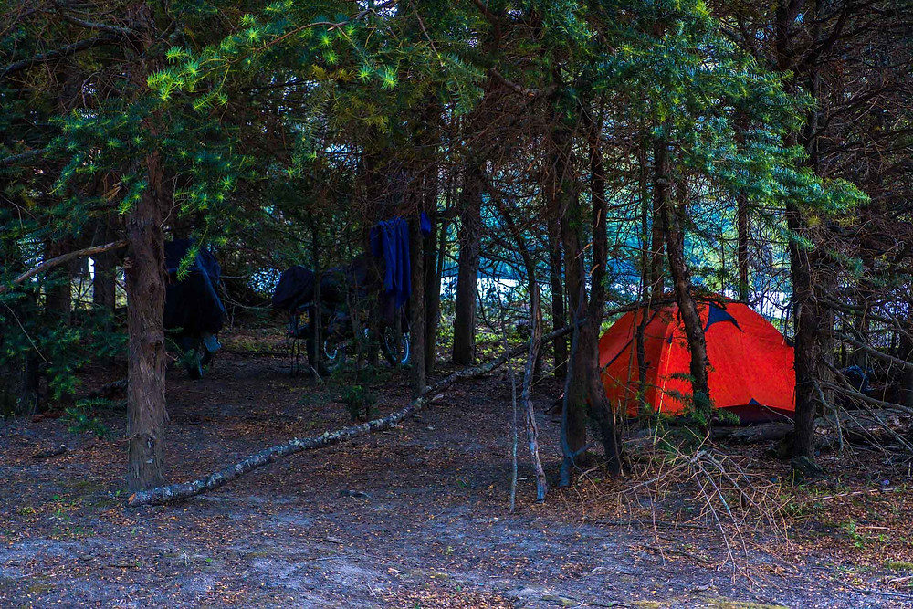 Wild Camping in the forest next to Rio Murta, Carretera Austral, Chile - AvVida.co.uk