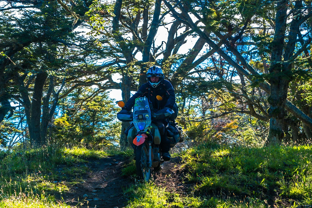 Kelvin making his way out of the trees after leaving our amazing wild camp spot - AvVida.co.uk