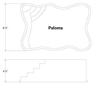 Paloma D-1.jpg