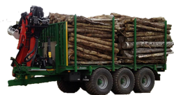 Timber Trailer fitted with Crane