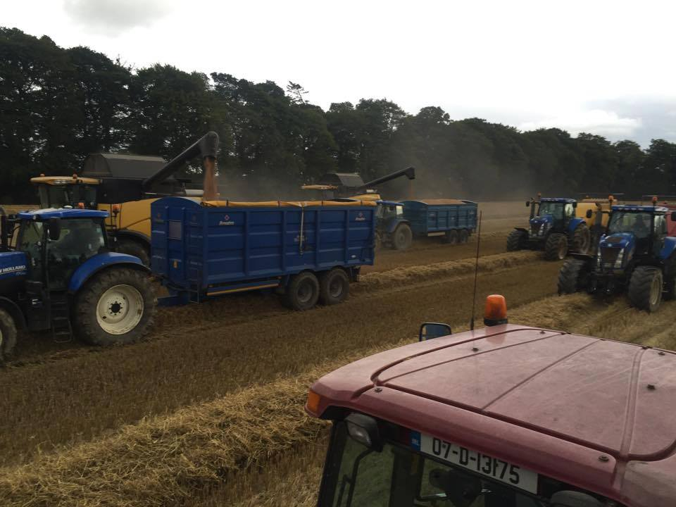 Multiple Broughan Grain Trailers