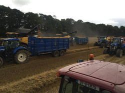 Multiple Broughan Grain Trailers
