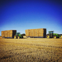Two Broughan Bale Trailer in Action