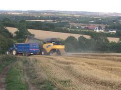 Broughan Blue Grain Trailer