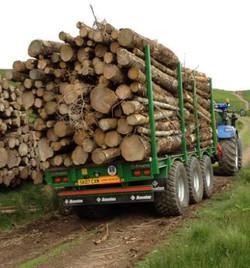 Bespoke Timber Trailer