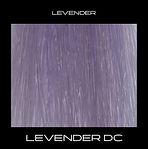 LEVENDER-DC.jpg