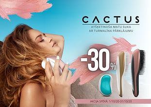 cactus_lv.jpg