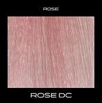 ROSE-DC.jpg