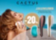 cactus_LV.png
