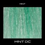 MINT-DC.jpg