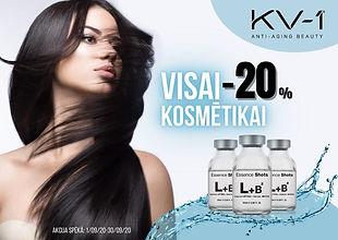 KV1_lv.jpg