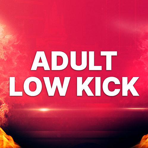ADULTS LOW KICK