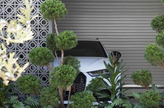 Outdoor Designer Store Shoot