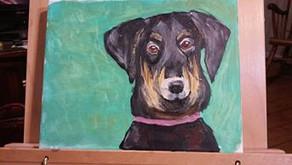 Perky Pup