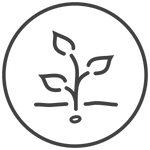 web icon roots anwenden.png