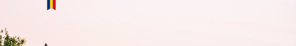 web icon banner summer mission.png