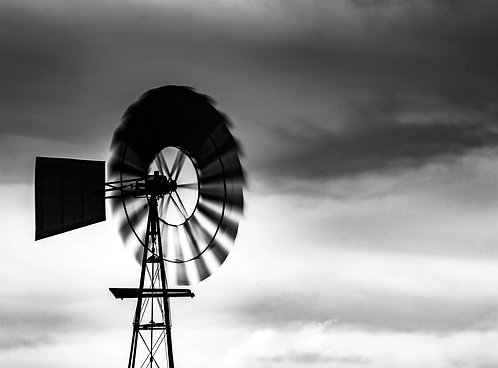 Harness the Wind: The Resilient Business