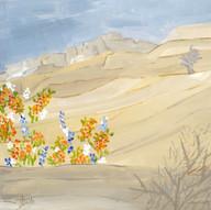 Le Pays aride, qu'il fleurisse qu'il se couvre de fleurs