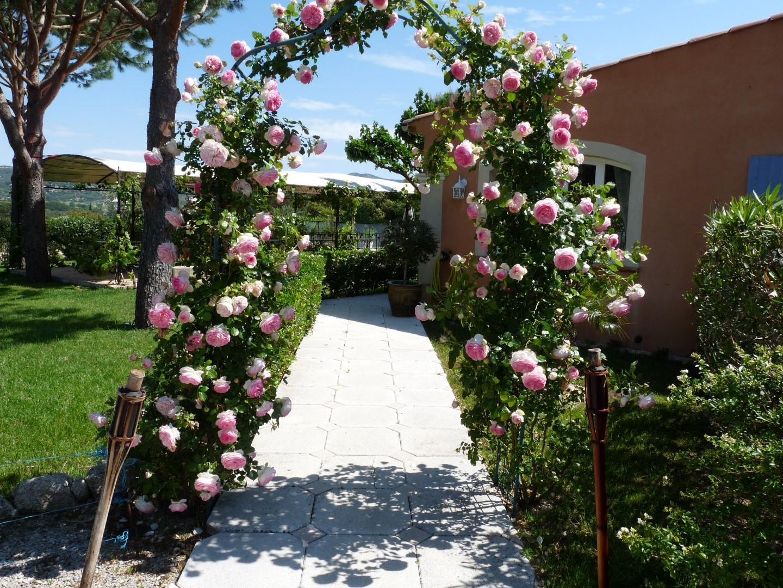 jardin 017 (Large)