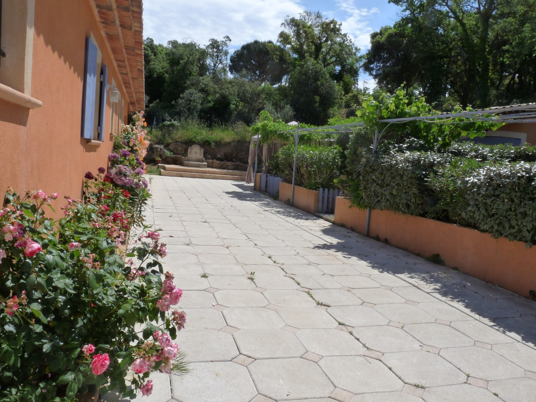 jardin 003 (Large)