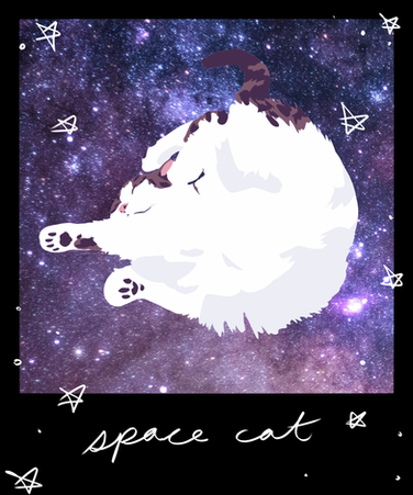 polaroidkits-space.png