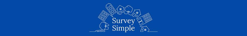 Survey Simple leaderboard.png
