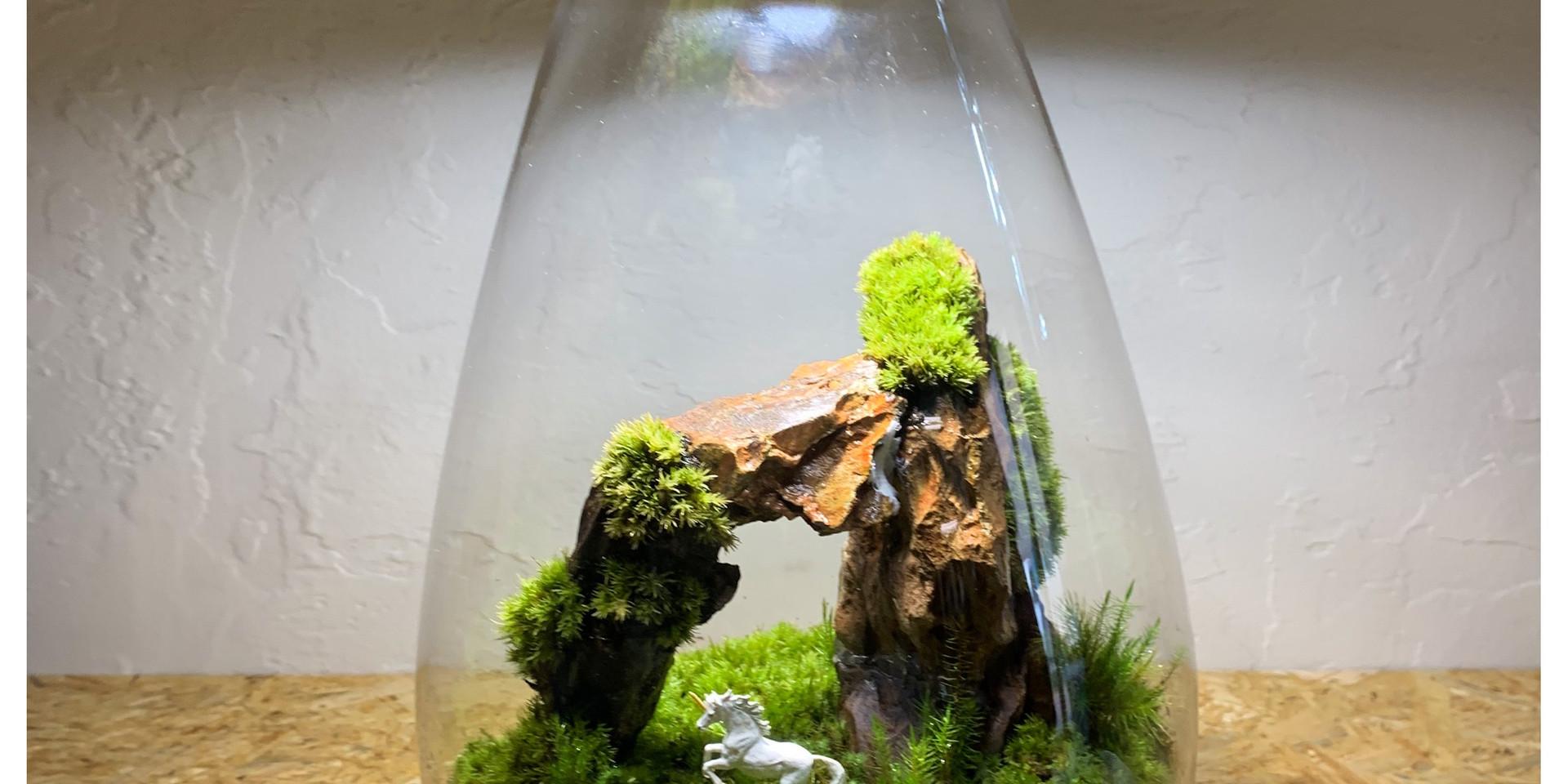 Mosslight×Feel The Gardenコラボ.jpg