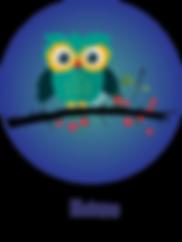 little-owl-medicine-circle-blue3.png