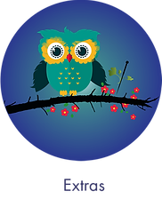 little-owl-medicine-circle-blue3.png