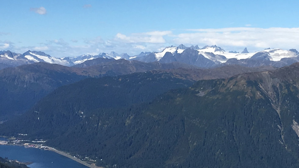 Juneau Highlights, Mendenhall Glacier and Douglas Island Tour